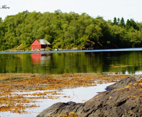Norwegen vom Kanu aus